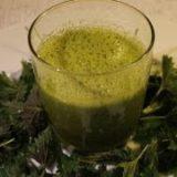 Grüner Smoothie mit Brennnesseln Rezept